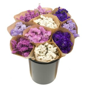 Dried Flower Straight Line Bunches, Mix 17
