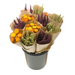 Dried Flower Straight Line Bunches, Mix 19