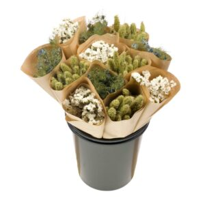Dried Flower Straight Line Bunches, Mix 20