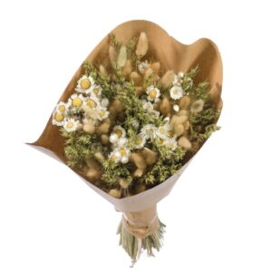 Dried flower bouquets, White