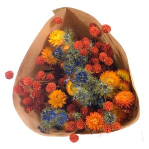 Dried flower bouquets, orange / blue