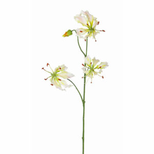 Faux Lily Gloriosa, White/Green
