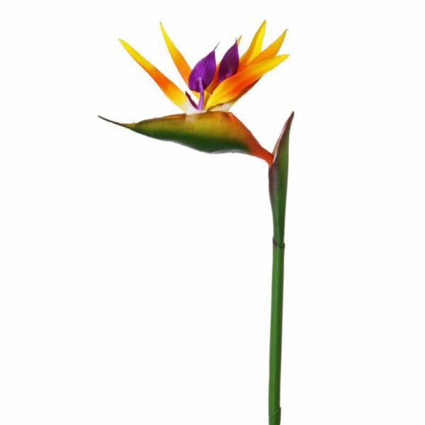 Faux Strelitzia or Bird of Paradise