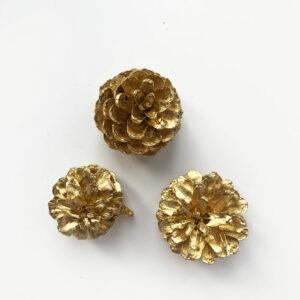 Pine Cone, Gold