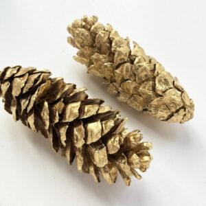 Strobus Cone, Gold