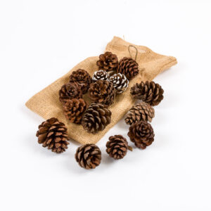 Scented Pine Cone Sack