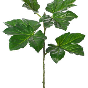 Okra Leaf Branch, Large