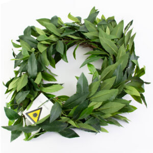 This image shows a faux laurel wreath against a white background