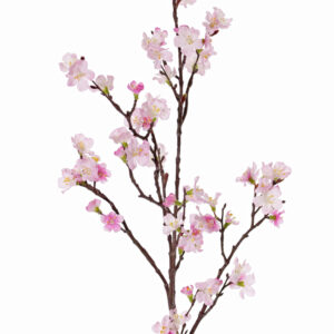 Sakura Blossom Branch, Pink