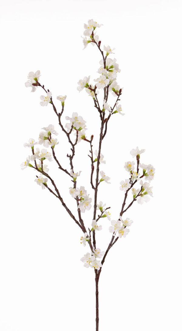 Sakura Blossom Branch, White