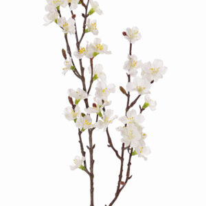 Sakura Blossom Branch, Small, White