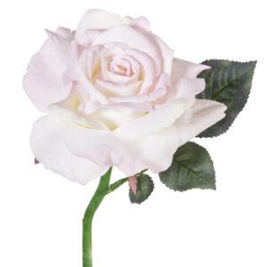 Rose Quiannie, White/Pink