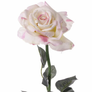 Rose Quiannie Large, Light Pink