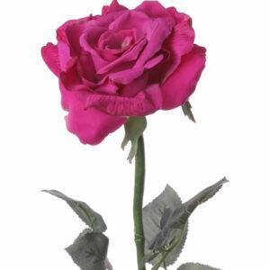Rose Quiannie Large, Pink