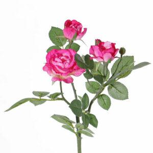Rose Spray Elsa, Pink