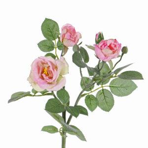 Rose Spray Elsa, Light Pink