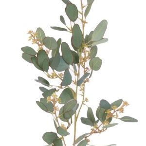 Eucalyptus 65cm UV