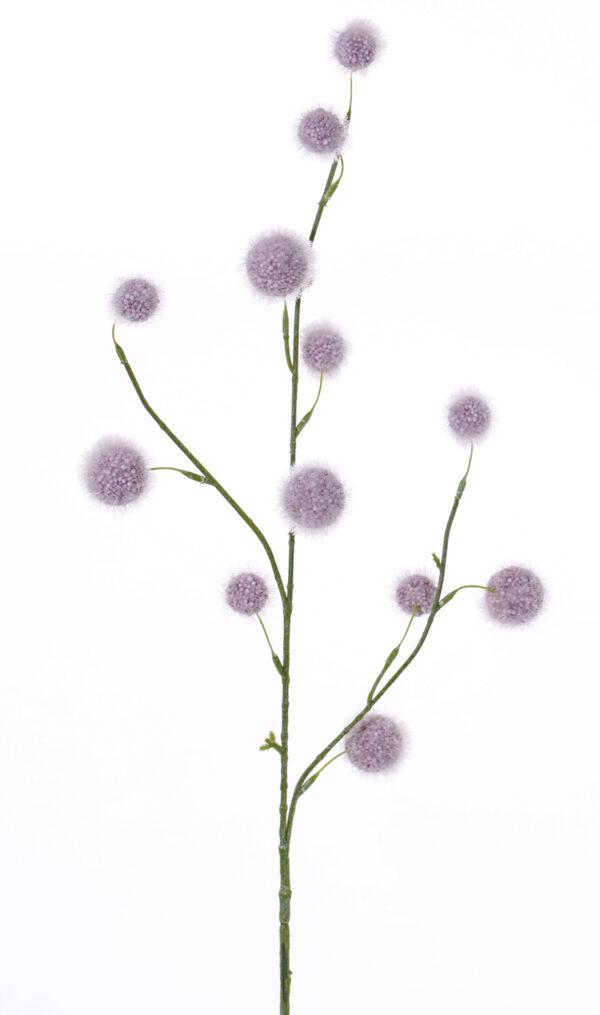 Allium Branch, Purple