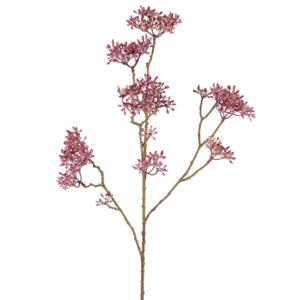Dogwood Bud Branch, Purple