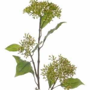 Dogwood Berry Branch, Green