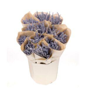 Ready to Retail Lavender