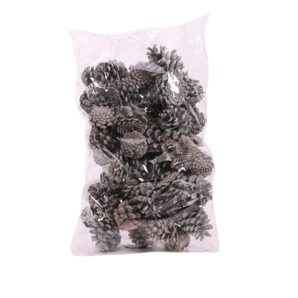Pine Cones Frosted, 1kg