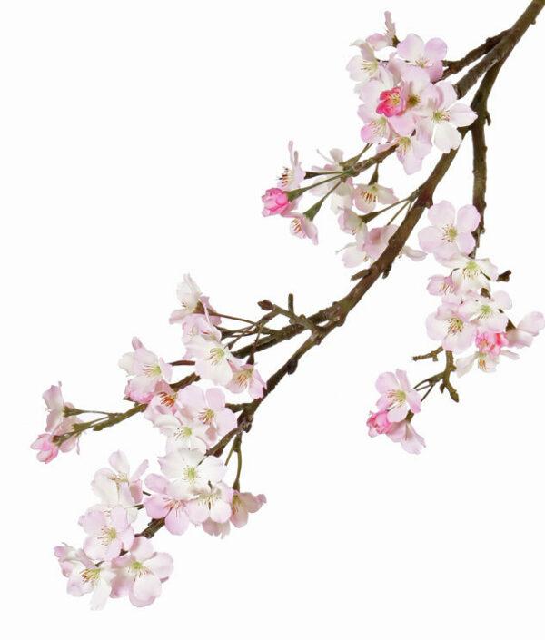 Apple Blossom Branch, Light Pink
