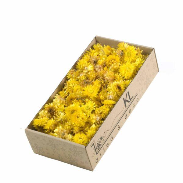 Helichrysum Heads Yellow, 100g