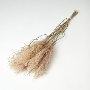 Fluffy Reed Grass natural Pink