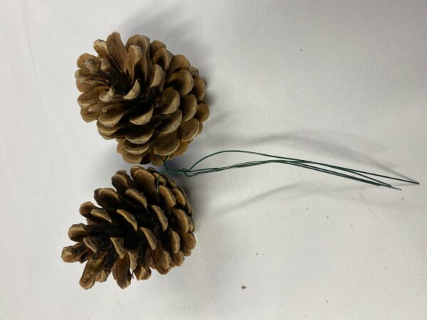 Pine Cone Duo on Wire