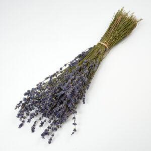 Lavender Extra Blue