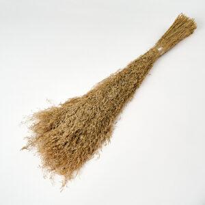 Munni Grass Bunch