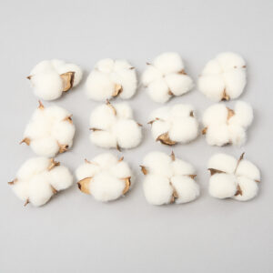 This is an image of a bag of Cotton Heads. They are white in colour and come 12 to a bag.