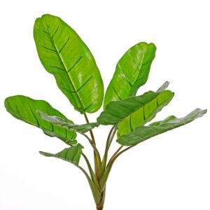Faux Banana Plant Musa
