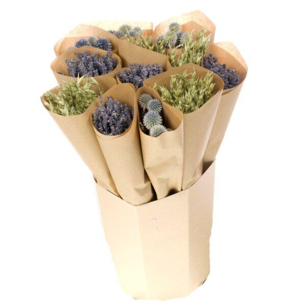 Natural Mix Oats Echinops Lavender
