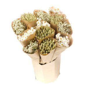 Natural Mix Triticum Gypsophila Rhodanthe White