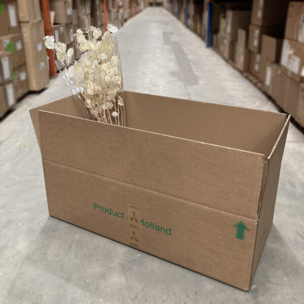 This image shows a cardboard box from an side view, with a sample of product inside.