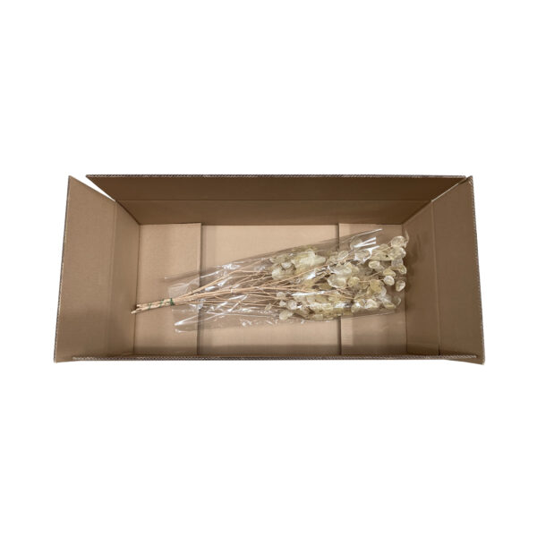 This image shows a cardboard box from an aerial view, with a sample of flowers inside.
