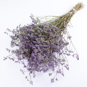 This is an image of an extra large bunch of limoneum in a violet colour, laid on a white background.