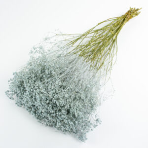 This image shows a giant bunch of dried blue gypsophila, laid on a white background.