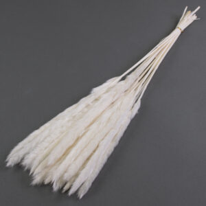 This image shows a bunch of bleached white pampas grass laid on a grey background.