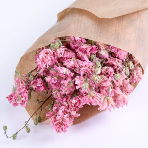 This image shows a bunch of dried, natural pink Larkspur, laid on a white background.
