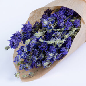 This image shows a bunch of dried, natural blue Larkspur, laid on a white background.