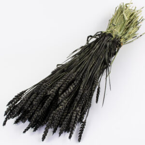 This image shows a bunch of wheat that has been coloured black, laid on a white background
