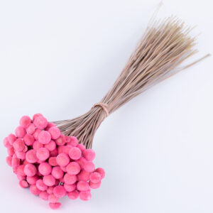 This image shows a bunch of bubble gum pink botao, against a white background
