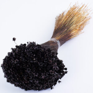 This image shows a bunch of black glixia against a white background
