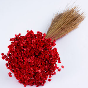 This image shows a bunch of bright red glixia against a white background