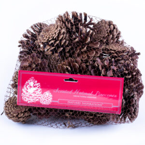 This image shows a net containing pine cones, set against a white background