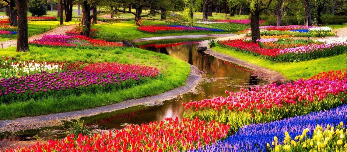 Keukenhof gardens in Holland